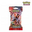 Pokémon TCG BREAKthrough Sleeved