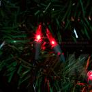 Luces Navidad Rojas Largo 7M